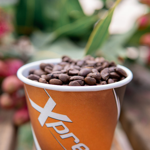 xpresso-beans-cup